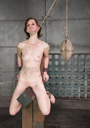 Free BDSM Pictures